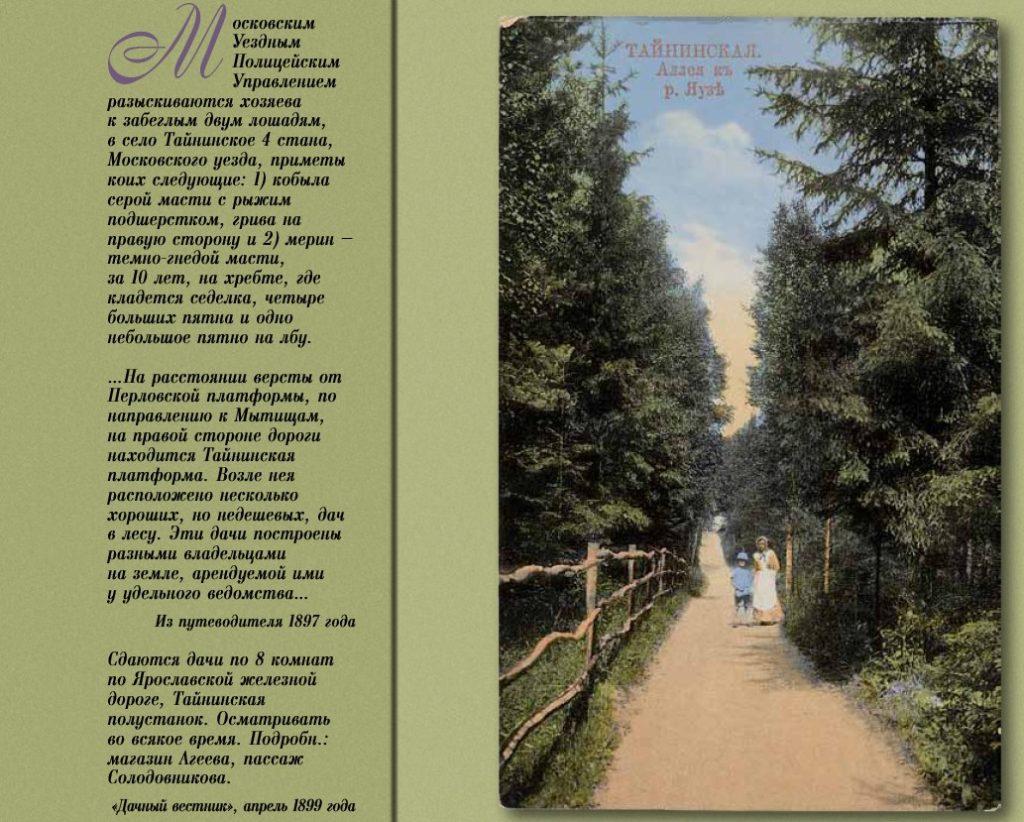 Ageev 1024x822 - Дача Агеева Пионерская 10 в цвете
